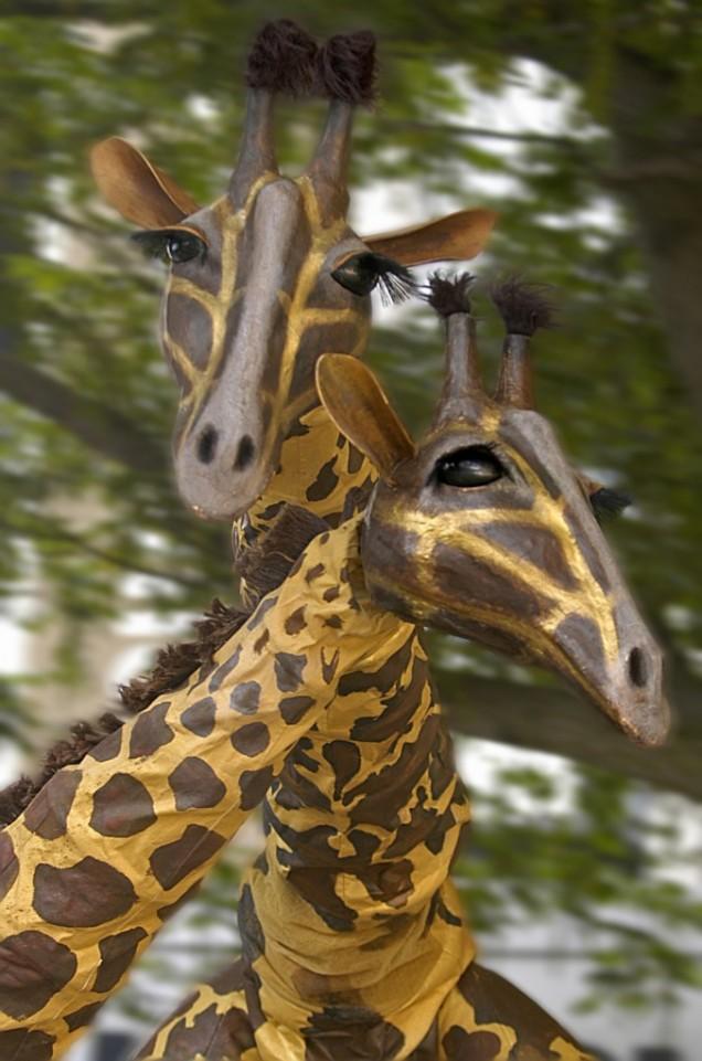 Giraffe - Teatro Pavana