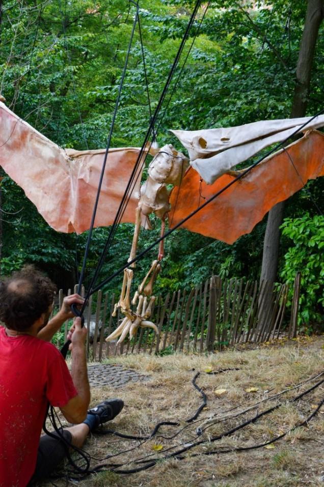 Pterodactylus - Vincent Glowinski